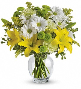 Teleflora's Brightly Blooming in Dallas TX, Petals & Stems Florist