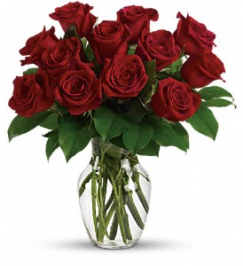 Enduring Passion - 12 Red Roses in Calgary AB, Charlotte's Web Florist
