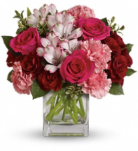Pink Passion in Moline IL, K'nees Florists