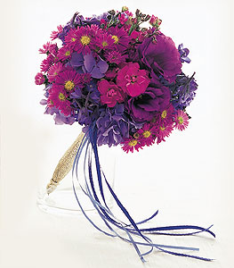 Violet Spectrum Nosegay in Winnipeg MB, Cosmopolitan Florists