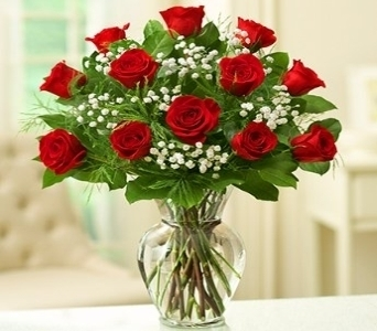 Rose Elegance - Dozen Premium Long Stem Red Roses in El Cajon CA, Conroy's