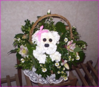Puppy Love in Hanover PA, Country Manor Florist