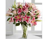 Roses & Lilies in Norristown PA, Plaza Flowers