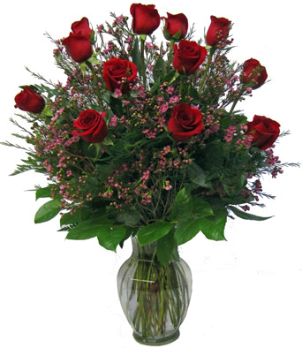 Premium, Longest-stemmed Roses in Scranton PA, McCarthy Flower Shop<br>of Scranton