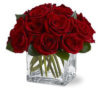 Dozen Rose Contempo: Local delivery only  in Scranton PA, McCarthy Flower Shop<br>of Scranton
