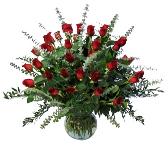 Three Dozen Premium Roses  in Scranton PA, McCarthy Flower Shop<br>of Scranton