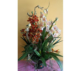 Cymbidium orchid combinations 40H x26W in Rowland Heights CA, Charming Flowers