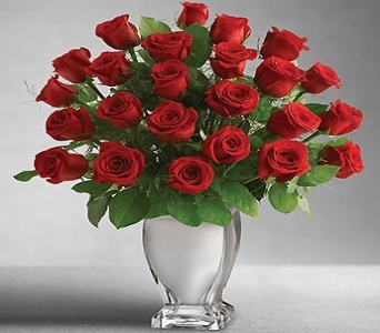 Red Premium Long Stem Roses in Silver Vase in Bluefield WV, Brown Sack Florist