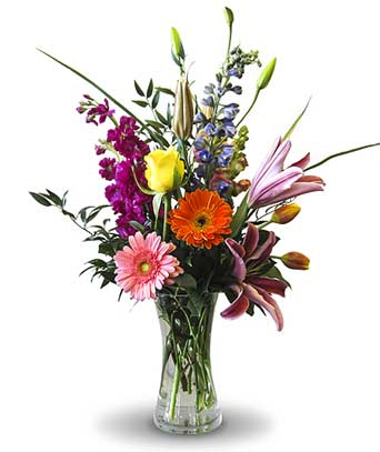 Mother''s Mix in Fort Worth TX, TCU Florist