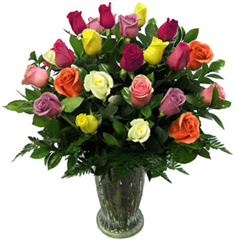 Two Dozen Rainbow Roses in Newport News VA, Pollards Florist