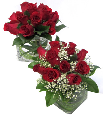 Posies of Roses: Red in Fort Myers FL, Fort Myers Florist, Inc.
