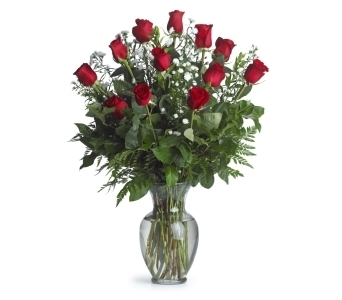 One Dozen Long Stemmed Red Roses in Pinellas Park FL, Hayes Florist