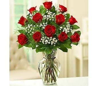 1 Dozen Red Roses in Palm Coast FL, Garden Of Eden
