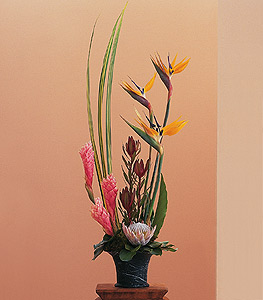 Tropical Paradise Arrangement in Campbell CA, Citti's Florists
