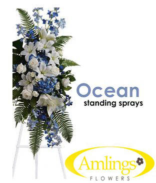 Ocean Standing Sprays in Chicagoland IL, Amling's Flowerland