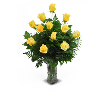 1 Dozen Yellow Long Stem Roses in Ogden UT, Jimmy's Flowers