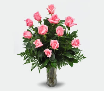 1 Dozen Pink Long Stem Roses in Ogden UT, Jimmy's Flowers