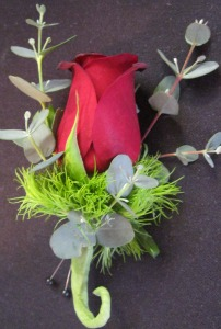 Red Rose & Eucalyptus in Farmington CT, Haworth's Flowers & Gifts, LLC.