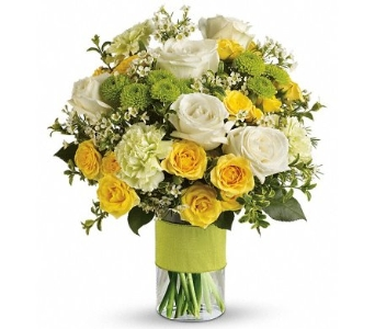 Your Sweet Smile in Norristown PA, Plaza Flowers