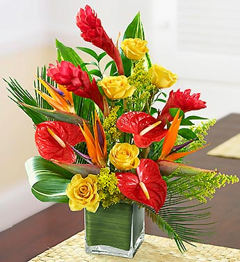 Tropical Paradise in Bradenton FL, Ms. Scarlett's Flowers & Gifts