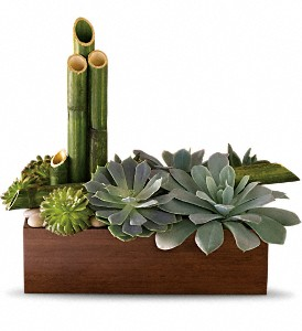 Peaceful Zen Garden $34.99-$74.99 in Bradenton FL, Ms. Scarlett's Flowers & Gifts