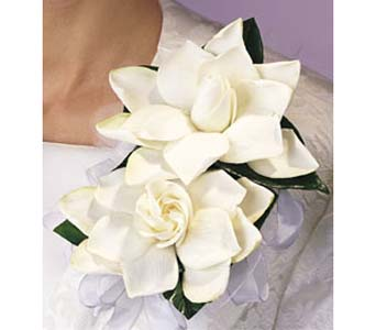 Just Gardenias in Brooklyn NY, Enchanted Florist