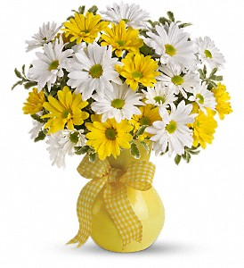 Teleflora's Upsy Daisy in Fairfield CA, Flower Basket