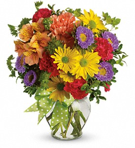 Make a Wish in Mount Morris MI, June's Floral Company & Fruit Bouquets