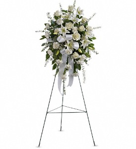 Sentiments of Serenity Spray in Randallstown MD, Raimondi's Funeral Flowers