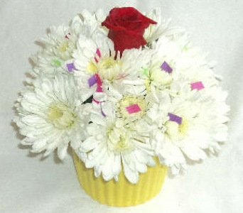 Mount Williams' Floral Cupcake in North Adams MA, Mount Williams Greenhouses, Inc.