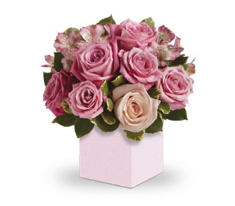Indulge Her in flower-delivery NSW, Mona Vale Florist & Nursery