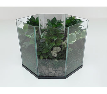 Emerald Garden Terrarium in Indianapolis IN, Gillespie Florists