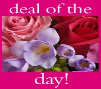 Deal of the Day Bouquet in Bethany OK, Ann's Secret Garden
