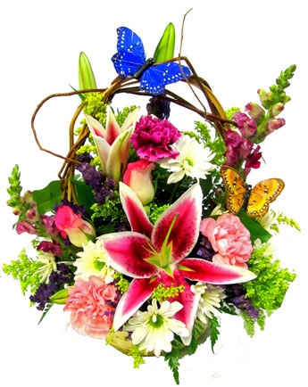 Butterfly Kisses in Fort Myers FL, Fort Myers Florist, Inc.