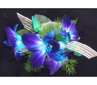 Tropical Blue Corsage in Corunna ON, KAY'S Petals & Plants