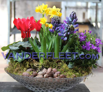 Spring Planter in Glass in Etobicoke ON, VANDERFLEET Flowers