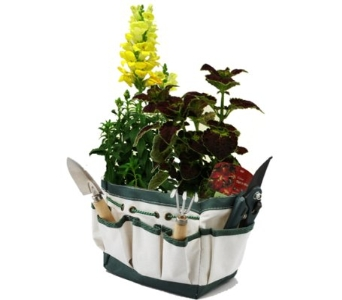 Gardener''s Gadgets and Blooming Plants in Birmingham AL, Norton's Florist