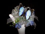 Flower & Butterfly Wristlet Corsage in Mount Vernon OH, Williams Flower Shop