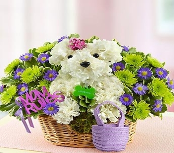 MAMA PAWS in Port Charlotte FL, Punta Gorda Florist Inc.