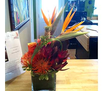 Tropicals in Chattanooga TN, Chattanooga Florist 877-698-3303