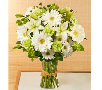 Serene Green™ dans Watertown CT, Agnew Florist