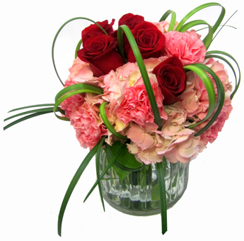 Pinkish Flakes & Velvet in Red in Newport News VA, Pollards Florist