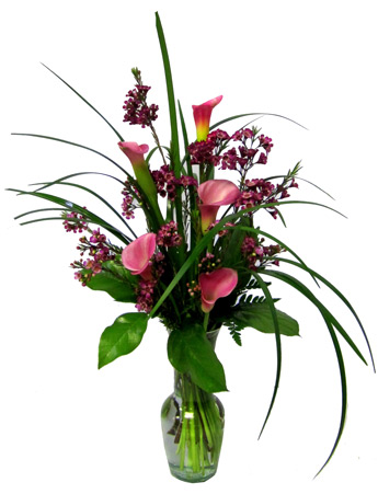 Calla Colors in Newport News VA, Pollards Florist