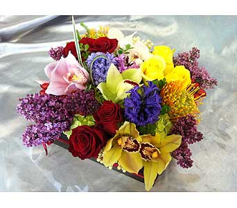 Invigorating Senses in Santa Monica CA, Santa Monica Florist