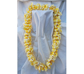Single Plumeria Lei in San Diego CA, Flowers Of Point Loma