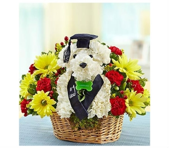 Best in Class in Bradenton FL, Ms. Scarlett's Flowers & Gifts