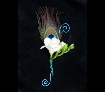 Peacock Feather Boutonniere in Portland ME, Dodge The Florist