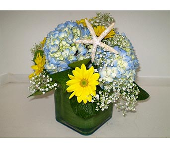 Sunny Days by the Sea in Falmouth MA, Falmouth Florist 508-540-2020