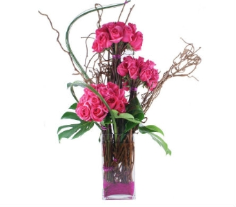 Hot Pink Explosion in Bradenton FL, Ms. Scarlett's Flowers & Gifts