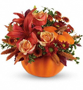 Autumn's Joy by Teleflora in North Syracuse NY, The Curious Rose Floral Designs
